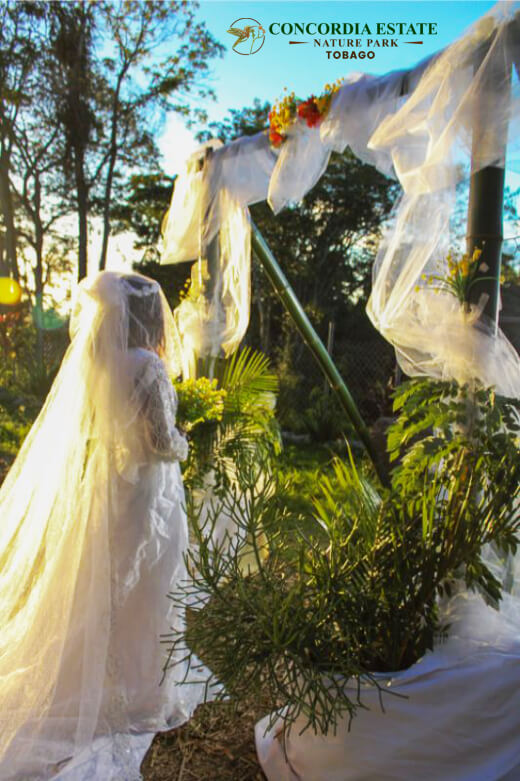 Why Concordia Estate Is a Perfect Eco-Tourism Wedding Destination