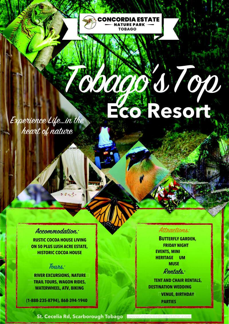 eco resort flyer